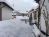 Frankewald im Schnee 5