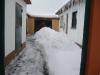 Frankenwald im Schnee 7