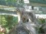 zoo_nbg